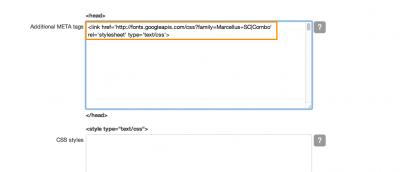 paste web font code