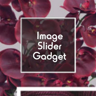 Image slider gadget