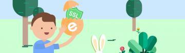 Spring deal ssl