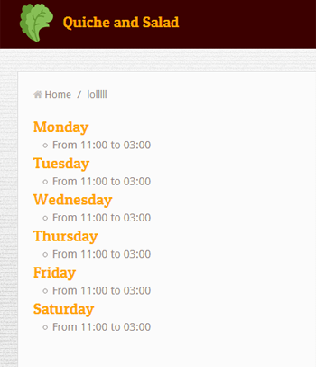 Widget opening hours site